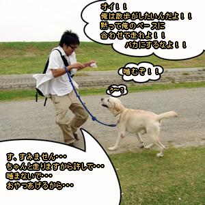 Neta_021_cocolog_oekaki_2009_10_21_